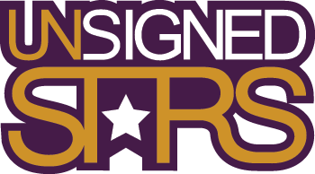 unsigned stars 2013 logo